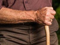 Emekli Sandığı Emeklilik Yaşı Hesaplama Ekranı