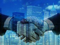 Varlık Yönetim Şirketleri Borç Sorgulama | Varlık şirketine devredilen borç nasıl öğrenilir?