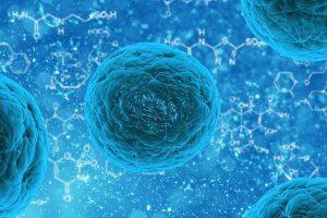 Virüs Ve Bakterilerin Neden Olduğu Hastalıklar