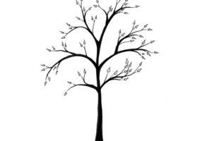 Kolay Ağaç Çizimi   Kolay Ağaç Çizimi Nasıl Olur